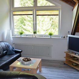 Ferienwohnung Titisee buchen Wohnung 18 Wohnbereich